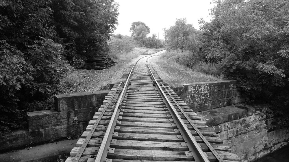 Tupponce Photography David Tupponce Bridgeville PA Pennsylvania USA United States Of America USA Graffiti Wall Railroad Track Rail Transportation No People Outdoors Tree Day The Way Forward Water Vanishing Point Reflection River Railroad Tracks Built Structure Railroad Bridge Black And White Collection  Black And White Photography Black & White
