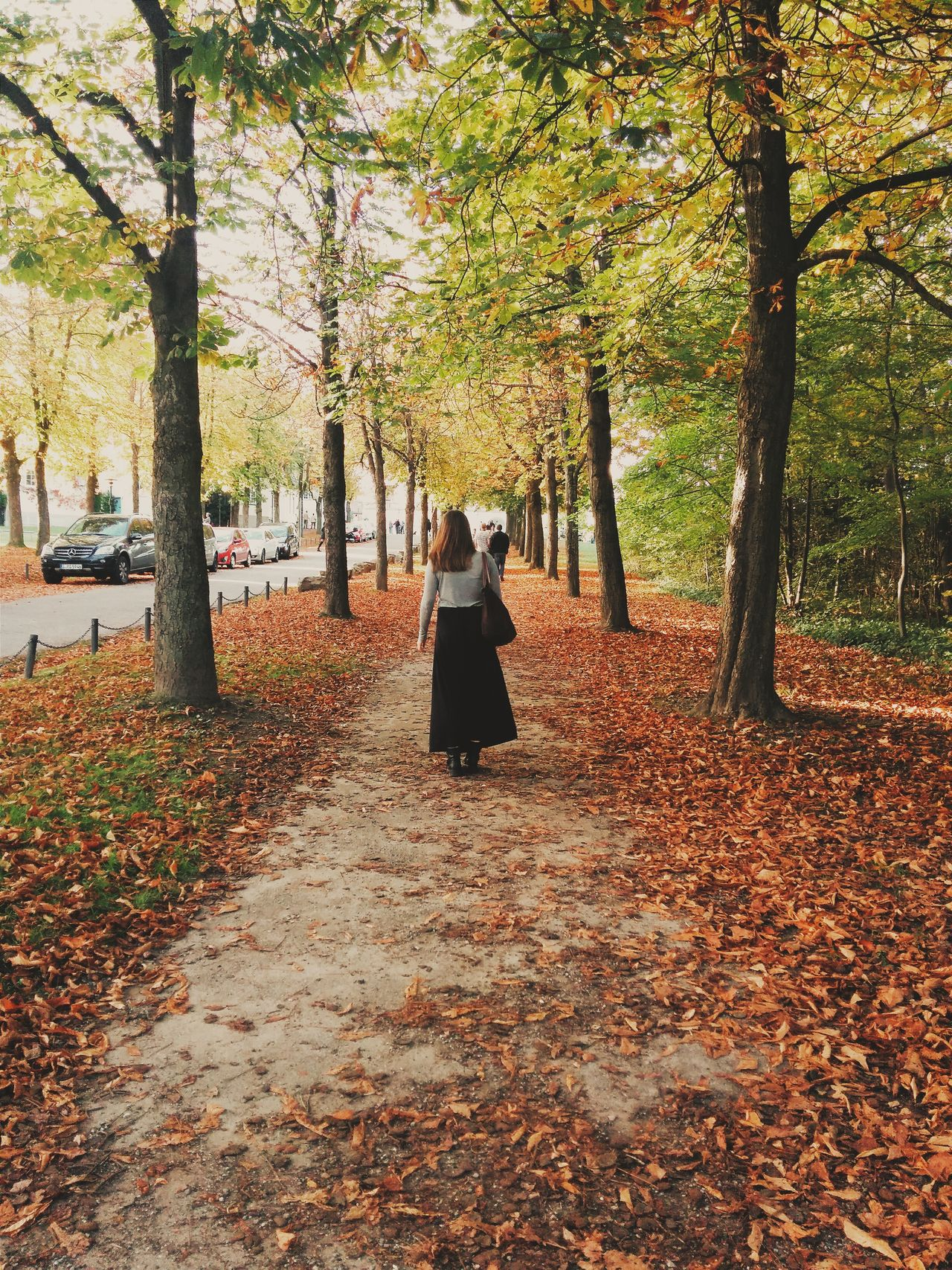 Woman walking away along park alley covered in autumn leaves