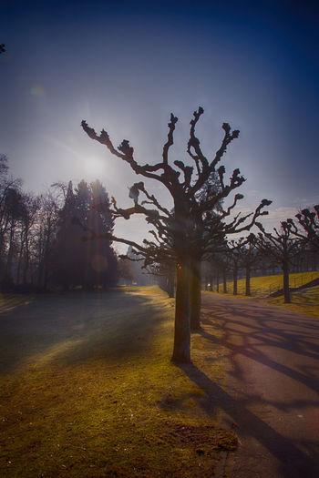 Bad Orb Impressionen Bad Orb Bad Orb Himmel Kurstadt Nature No People Outdoor Photography Outdoors Saline Sky
