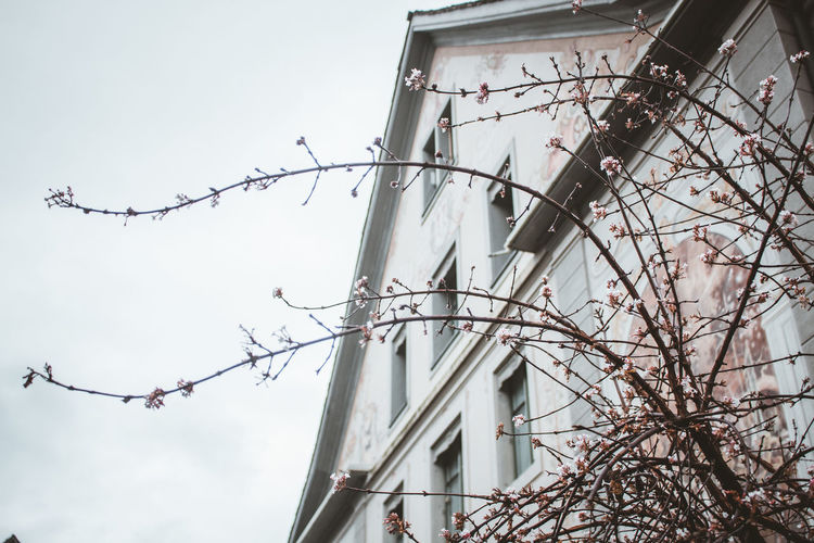 Low angle view of barbed wire against building