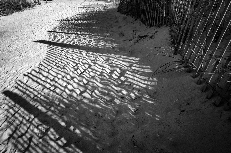 Long Day Beach
