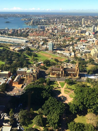 Taking Photos Traveling Travel Sydney 360° Sydney Tower Eye View From The Window... St Mary's Cathedral IPhoneography