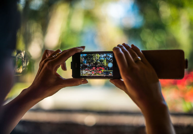 Cropped Image Of Woman Photographing Plants And Trees Through Mobile Phone