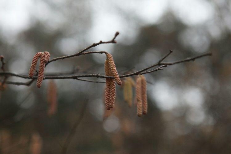 산을담다   make me Smile Brown Tree Barunecos.com 바른생태살림원♩ Be the Nature