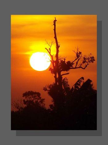The Sun Sunset Orange Color Sun Dramatic Sunset Sunset Silhouette Sunset View. Sunlight Sunset Colors Outdoor Photography Amazing Sunset Beautiful Sunset Sunset Collection Sunset Photography Dramatic Sundown Dramatic Sunset Colors Sunset Light Sunset Lovers Dramatic View Awesome Sunset The Sunset Sunset And Clouds  Outdoor Sunset Silhouettes Silhouette
