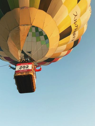 Saga International Balloon Fiesta Low Angle View Hot Air Balloon Transportation Adventure Clear Sky Mid-air Flying Outdoors Day Ballooning Festival Hanging Sky Multi Colored Extreme Sports No People Shot On IPhone. iPhoneX
