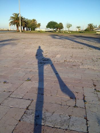 Shadow Sunlight Focus On Shadow Real People Tree One Person Day Outdoors Leisure Activity Lifestyles Nature Palm Tree Human Body Part Sky Human Hand People EyeEmNewHere