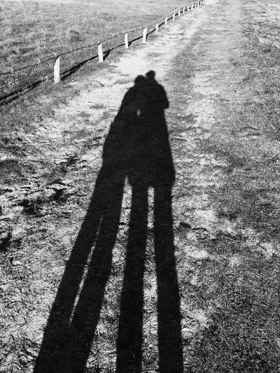 Alone Boys Carefree Day Diminishing Perspective Escapism Family Footpath Forest Getting Away From It All Giants Grass IPhoneography Long Outdoors Railroad Track Road Shadow Smile Sun The Way Forward Transportation Tree Tree Trunk Vanishing Point