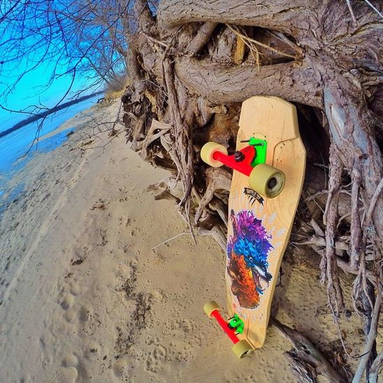 A cool shot of my Baffle37 by the Lake . Seems like yesterday it was Summer💛 now its -9 degrees every day😨 ( but now I get to snowboard !👌⛄️) some cool pics and videos of that this weekend, hopefully. Staytuned Gopro Gopronation GreatWeather Goprooftheday Winter Goprohero3plus Longboard Longboarder Longboarding Longboardsoapbox Originalskateboards Sector9