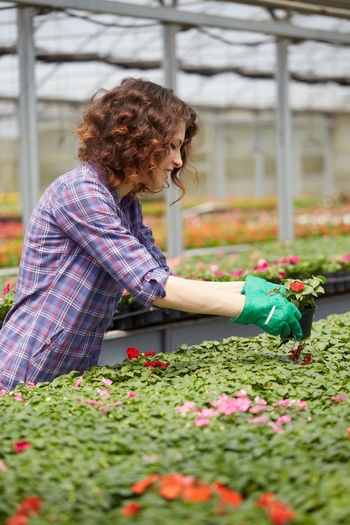 Side view of woman working in greenhouse