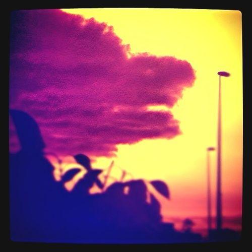 Dragon Or Cloud?