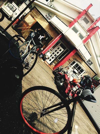 Trip Cycling Summer
