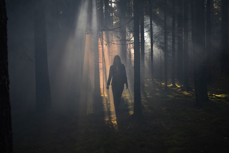 Woman standing by trees in forest during foggy weather