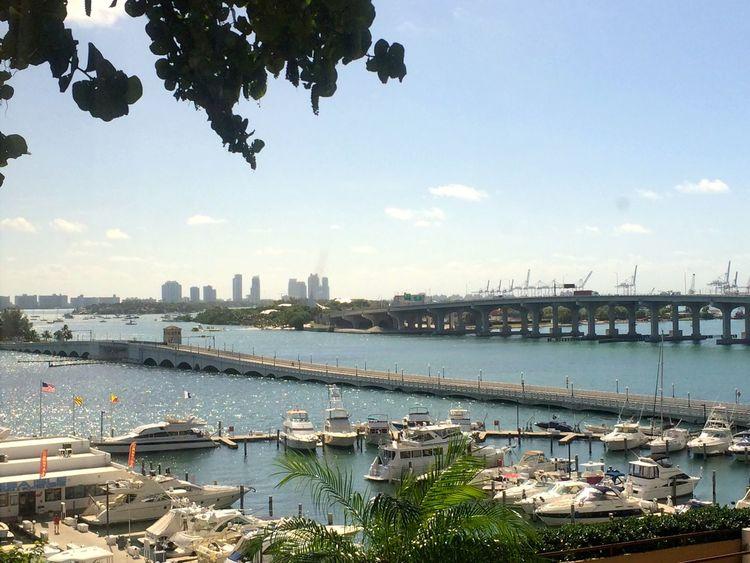 Architecture Bridge - Man Made Structure City Cityscape Day Miami FL Usa 🇺🇸☀️ Nautical Vessel No People Outdoors Sky Transportation Tree Venetian Causeway Water