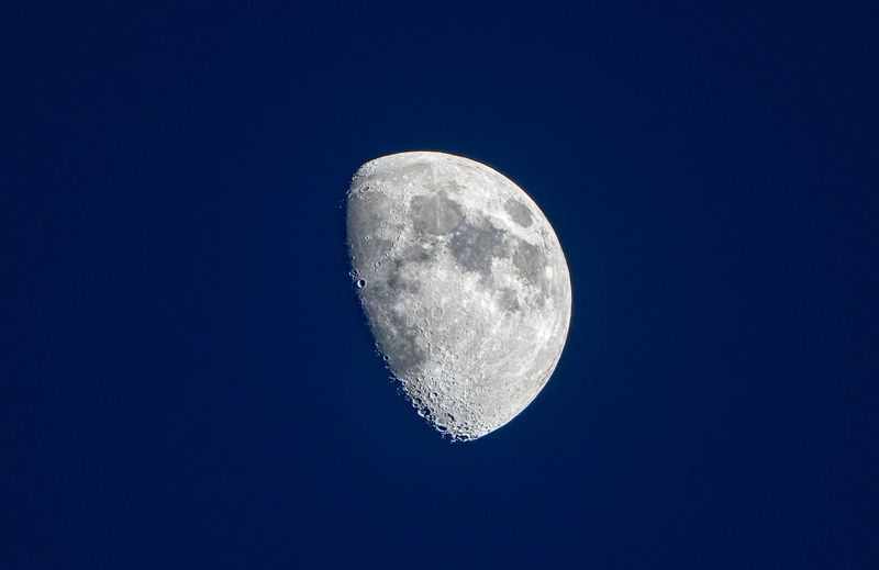 Waxing gibbous closeup of the moon Moon Astronomy Night Sky Space Beauty In Nature Moon Surface Low Angle View Planetary Moon Copy Space Tranquility Scenics - Nature Blue Clear Sky Tranquil Scene Half Moon Space And Astronomy Astrology Moonlight Details Closeup Waxing Gibbous
