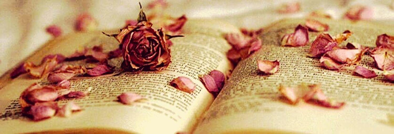 Visual Poetry Lovelanguage Petalsandbuds ArsPoetica