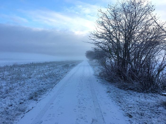 Winter Snow Cold Temperature Bare Tree Sky Weather Nature Scenics The Way Forward Landscape Road Day Beauty In Nature Cloud - Sky Tree Outdoors No People Tranquil Scene Tranquility Steinenbronn Schnee Schneelandschaft Morgenstimmung Morgens Felder Im Winter