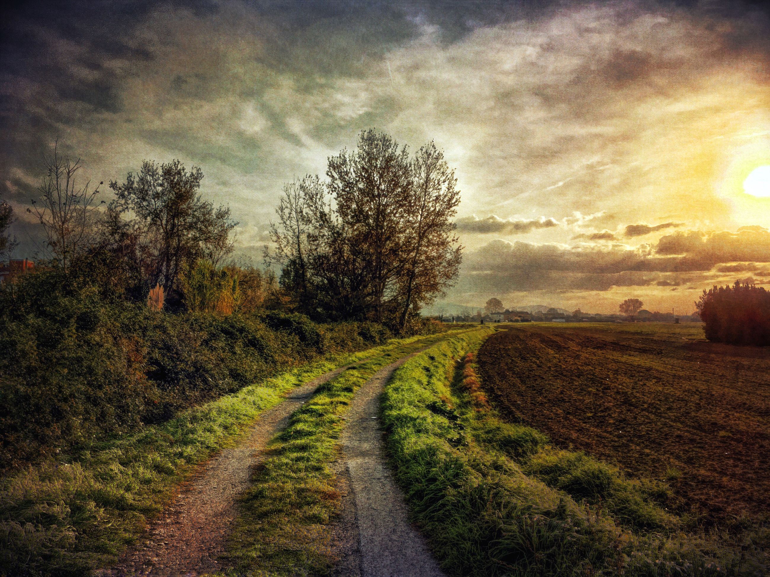 the way forward, sky, landscape, tranquility, tranquil scene, field, diminishing perspective, tree, vanishing point, road, dirt road, nature, rural scene, transportation, country road, cloud - sky, scenics, beauty in nature, growth, agriculture