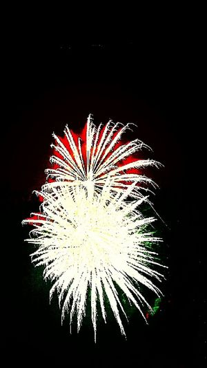 Fireworks Fireworks In The Sky Fireworks On Forth Of July Firework Display Fireworks Photography Celebration Independence Day July4th July 2016 Night Photography Night Time Outdoor Photography Outdoor Activity Outdoor Fun Celebrate Explosion In The Sky Exploding Fireworks