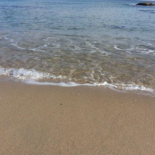 동해안 어느 해변... 동해 동해바다 동해안 해안 바다 여행 휴가 해수욕장 낭만 여유 출사