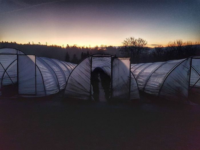 Greenhouses Dawn Sunrise Morning Horticulture Greenhouse Sky