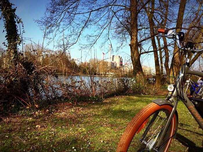 Lilu Electra Townie Electra Bike Chilling Riverside River