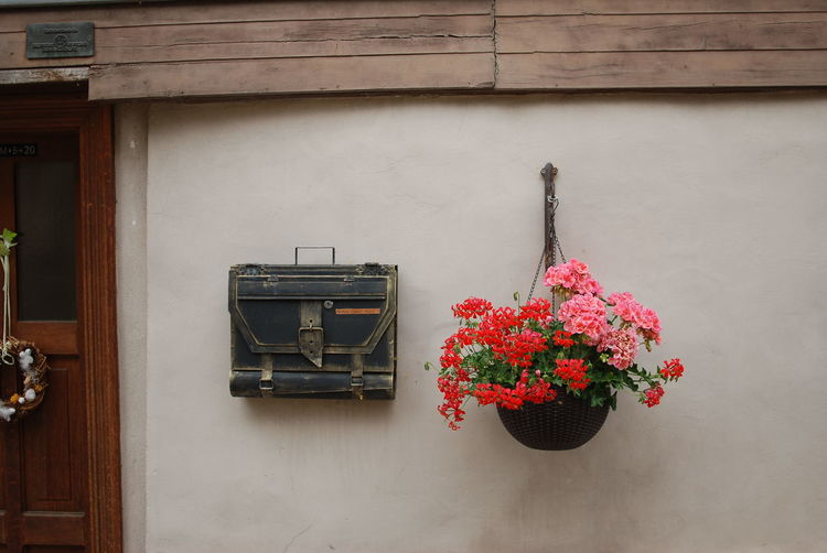 Red flower pot on window against wall