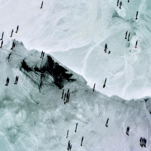 High angle view of birds on frozen sea