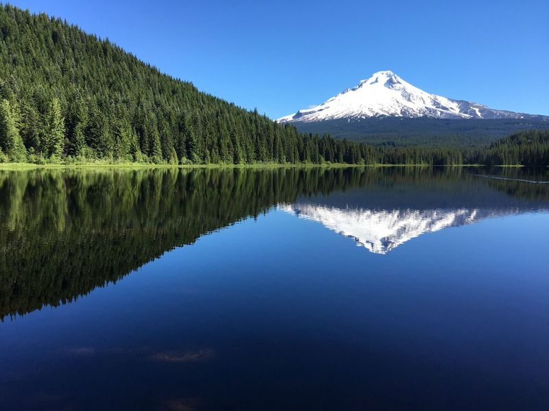 Mount Hood from Trillium Lake Lost In The Landscape