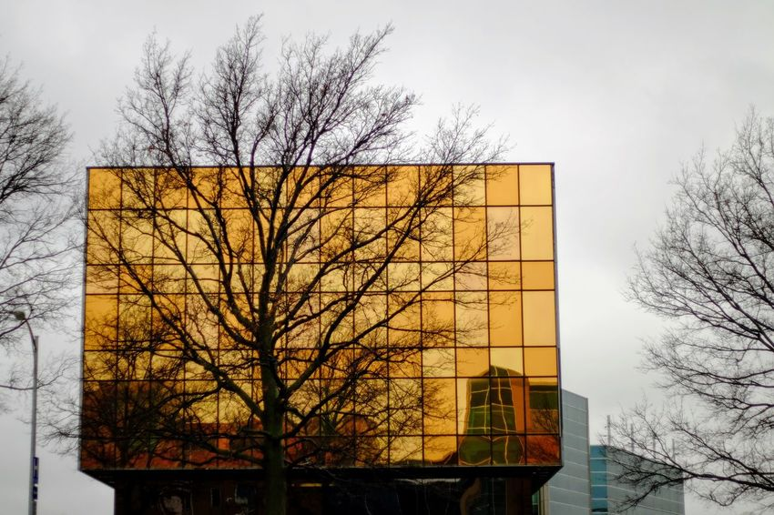 Visual Journal March 2017 Omaha, Nebraska America Architecture Bare Tree Building Exterior Check This Out Children's Hospital  City Cold Temperature Color Photography Composition Everyday Lives EyeEm Best Shots EyeEm Gallery Kids Of EyeEm Landmark Building Mirror No People Omaha, Nebraska Outdoors Photo Diary Photo Essay Reflection Reflections Storytelling Visual Journal