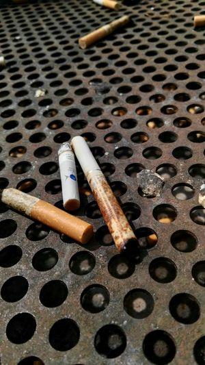 Rusty Chick Metal Close-up Zigaretten Filter Filterzigaretten Zigarettenstummel Müll Kippen Nasse Kippen Nasse Zigaretten Aschenbecher Lochblech Blech Löcher Nasser Müll Rest Dump Waste Seitenblicke