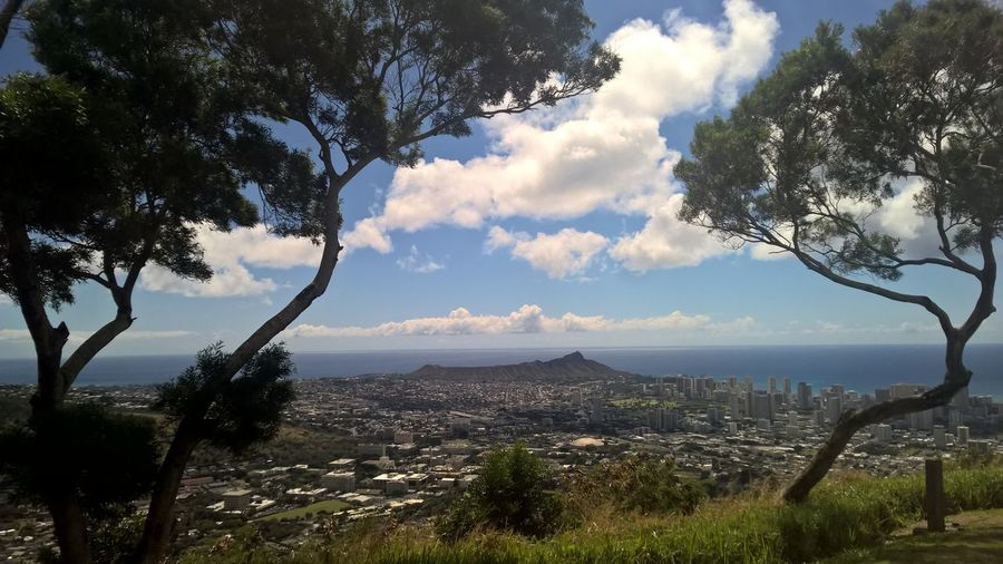 A view to Diamond Head. Diamond Head is a volcanic tuff cone on the Hawaiian island of Oʻahu Tree Cloud - Sky Plant Sky Nature Scenics - Nature Beauty In Nature Environment Tranquil Scene Tranquility No People Landscape Day Water Growth Land Outdoors Architecture Mountain Cityscape Hawaii Waikiki