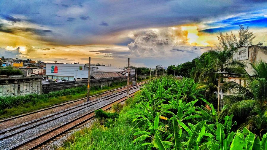 Plant Cloud - Sky Railroad Track Beauty In Nature Architecture Building Exterior Green Color Tree Nature Growth Outdoors No People Land Vehicle Water Day Transportation Sky Rail Transportation First Eyeem Photo