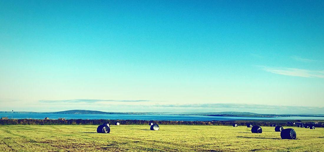 Land, Sea And Air Rural Coastal Farming Green Blue