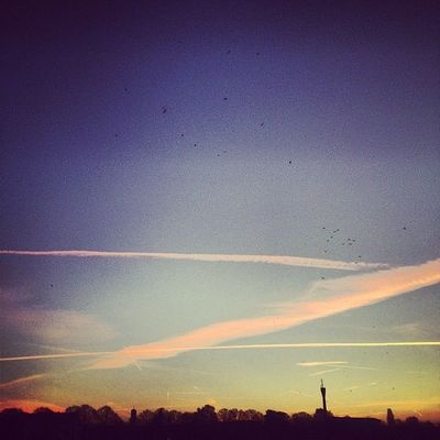 #sunrise #autumn #fall #maschsee #instadaily #streetphotography #picoftheday #iggers #instahub #urban #hannover #instagood #instadaily #instamood #webstagram #igersgermany #instagramhub #instapic #ignation #bestoftheday #instaart #instapro #gf_germany #pa Instadaily Ignation Streetphotography Instaart Urban Instapic Sunrise Instahub Autumn Igersgermany Fall Gf_germany Hannover Iggers Picoftheday Instapro Partnersingrime Instamood Bestoftheday Instagood Instagramhub Webstagram Maschsee