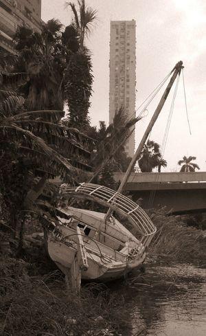Останки яхты на берегу Нила в Каире. египет пейзаж Egypt Landscape