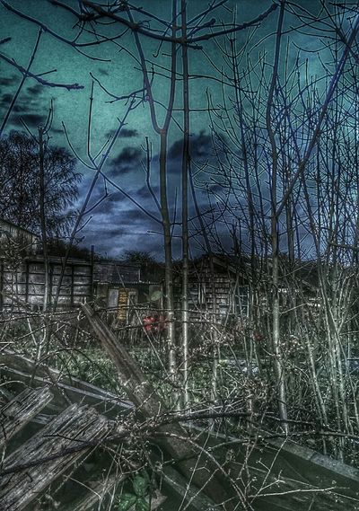If You Go Down To The Woods Today.. Can You Find The Hidden...? Hidden Danger! Dark Photography Spooky House
