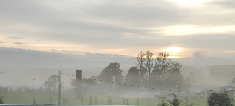Sunrise & Haze Sunrise Highway Rodoviadosbandeirantes Travels Sky Cloud - Sky Tree Fog Plant Nature No People Tranquil Scene