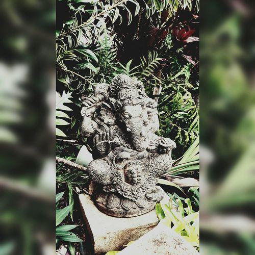First Eyeem Photo Ganesha Hindu Hinduism Hawaii Kauai