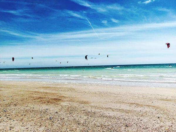 Kites On The Beach Beach Sea Horizon Over Water Blue Sky Sand Kitesurfing Kiteboarding Kitesurf Kitesurfers Kites In Motion Kitesurfing Freestyle Beachphotography Beachscape Outdoors