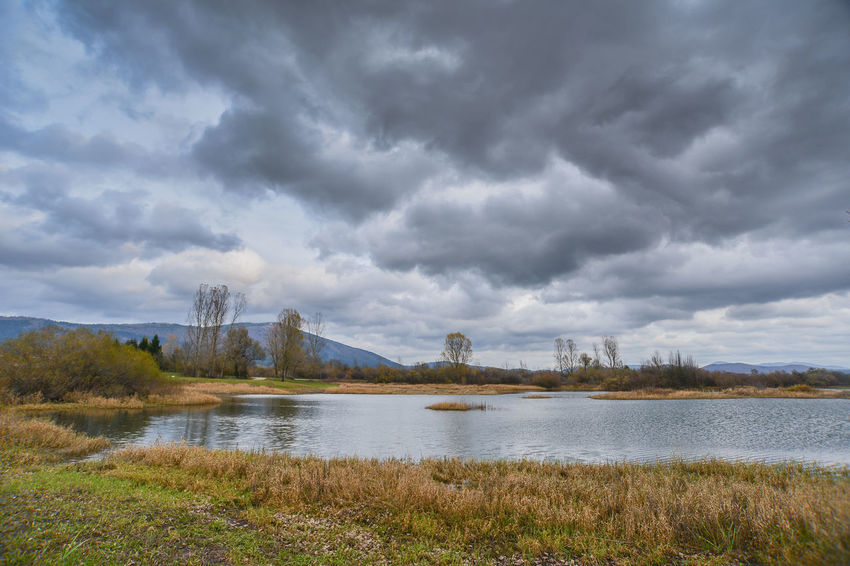 Cerknica Lake Cerkniško Jezero Beauty In Nature Cerknica Cloud - Sky Day Grass Lake Lake View Landscape Nature No People Outdoors Scenics Sky Storm Cloud Tranquil Scene Tranquility Travel Destinations Tree Water