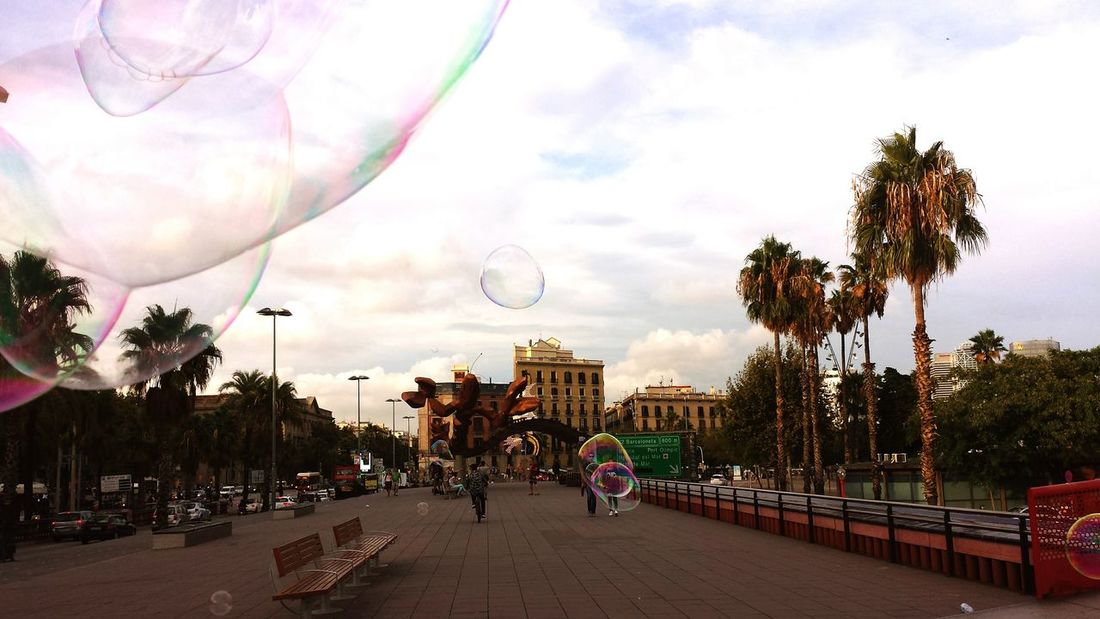 Soap Bubbles Taking Photos Wow! Palmtrees Beautiful Day Relaxing View Barcelona Enjoying This Beautiful Wheather Have A Lot Of Fun  Hello World
