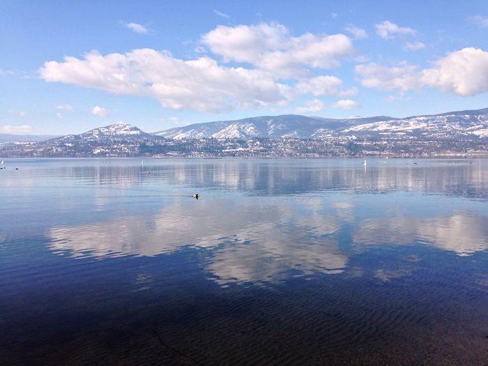 Cloud reflections in the lake Lake Okanagan Lake Reflection Cloud Reflections Zen Peaceful Calm January Winter Nature Kelowna
