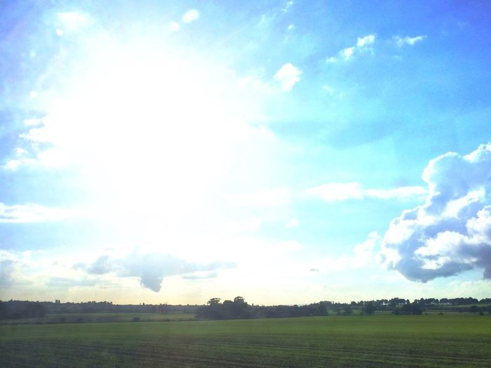 The View From The Train