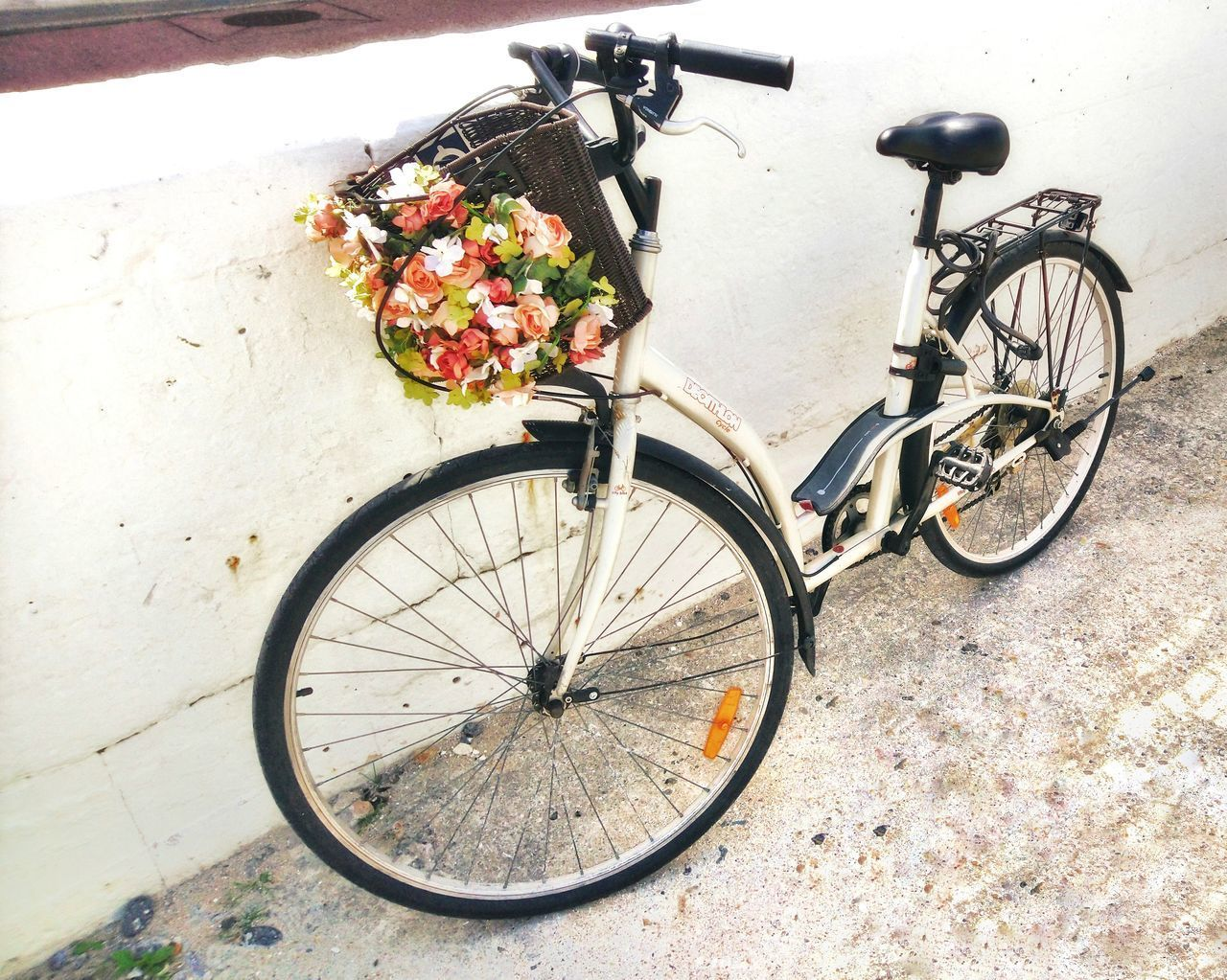 bicycle, land vehicle, transportation, mode of transportation, stationary, bicycle basket, basket, no people, travel, day, container, parking, high angle view, outdoors, flowering plant, flower, nature, architecture, city, plant, wheel, spoke