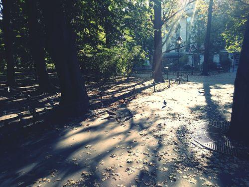 Jesień na plantach First Eyeem Photo