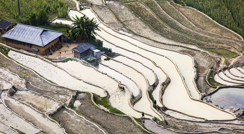 terraced Fild Beauty In Nature Built Structure Day High Angle View Landscape Terraced Field