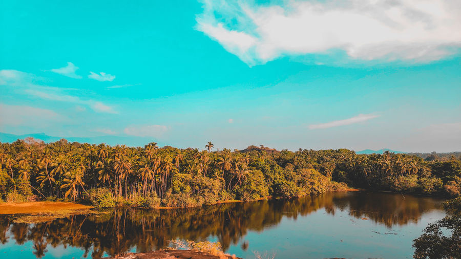 nature and it's beauty Reflections In The Water Water Flamingo Multi Colored Sky Lake Lakeside Calm First Eyeem Photo