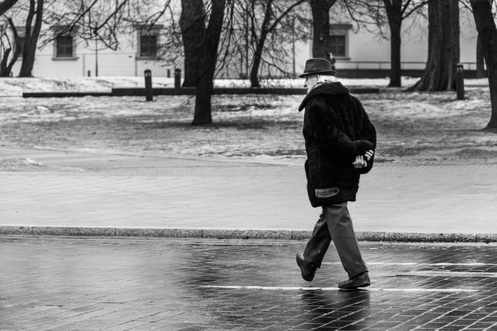 Old man with the hat runs across the cobble street in the city center Adult Blackandwhite Coat Cobbled Streets Cobbles Cobblestone Crossing Hat Ignoring Lithuania No Rules Old Man One Person Outdoors Pensioner Rain Rear View Restriction Runs Street Street Photography Vilnius Walking Wet White Hair