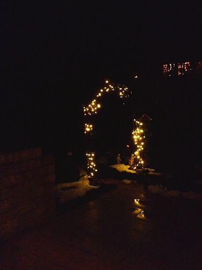 Taking Photos Christmas Lights